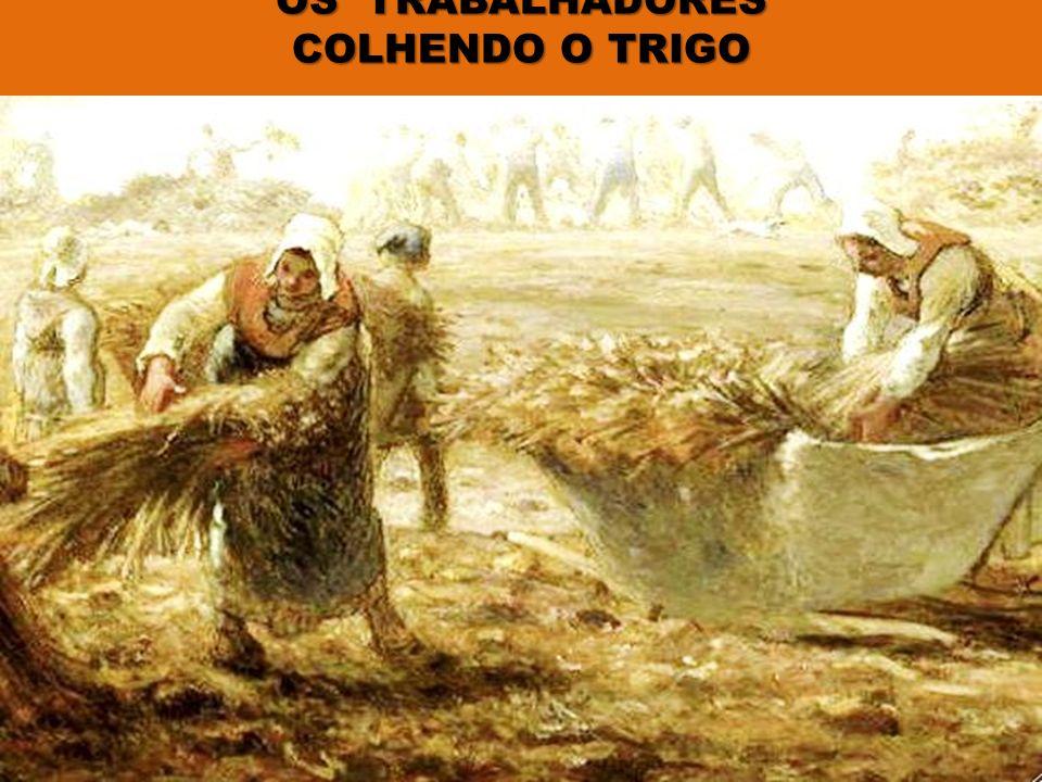 OS TRABALHADORES COLHENDO O TRIGO