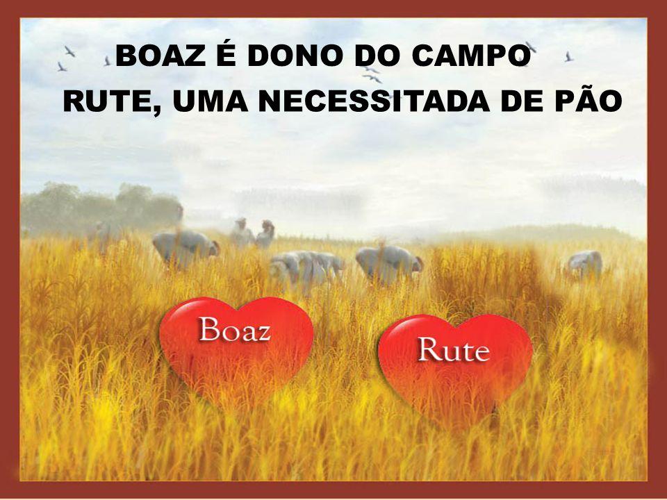 BOAZ É DONO DO CAMPO RUTE, UMA NECESSITADA DE PÃO
