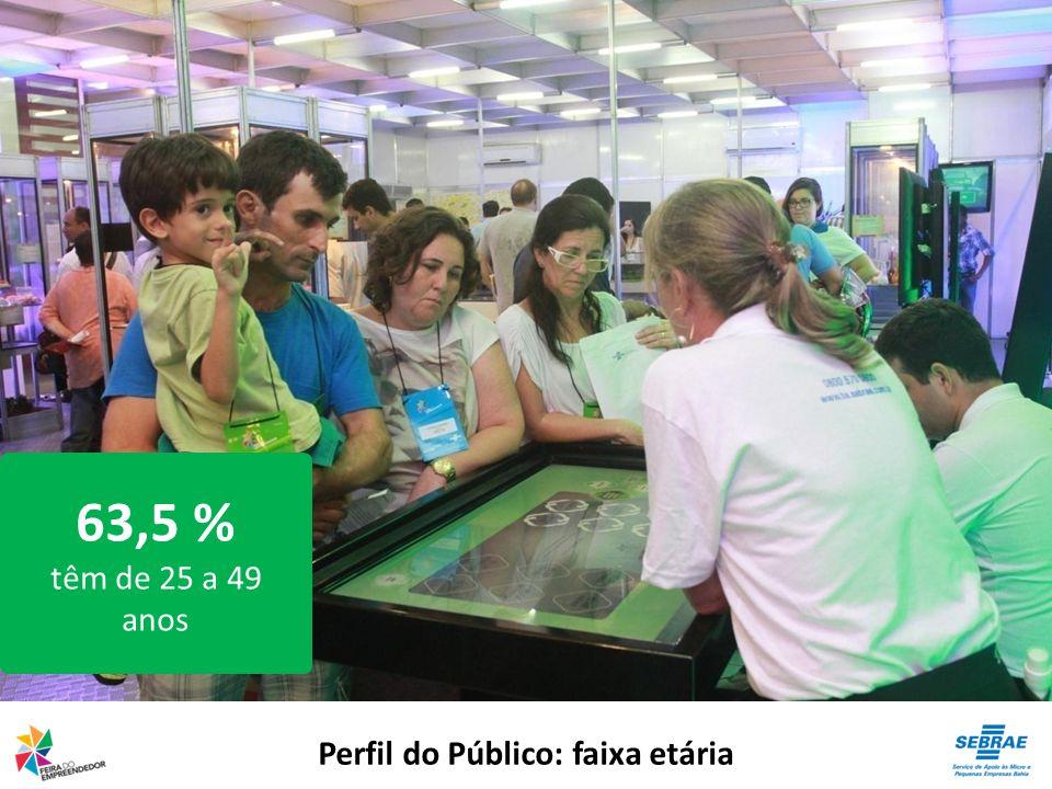 Perfil do Público: faixa etária