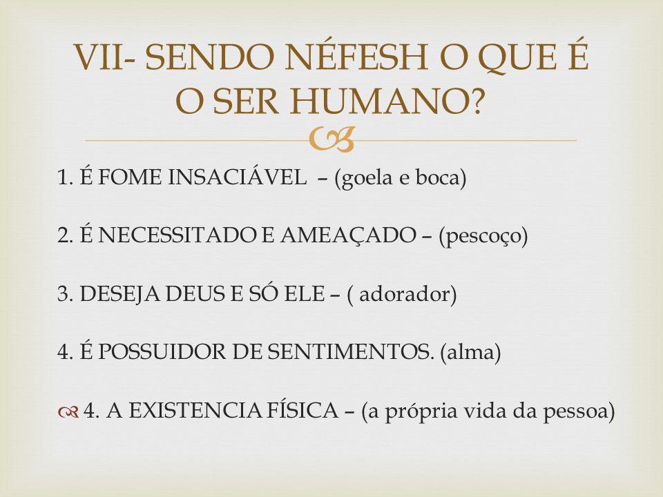 VII- SENDO NÉFESH O QUE É O SER HUMANO