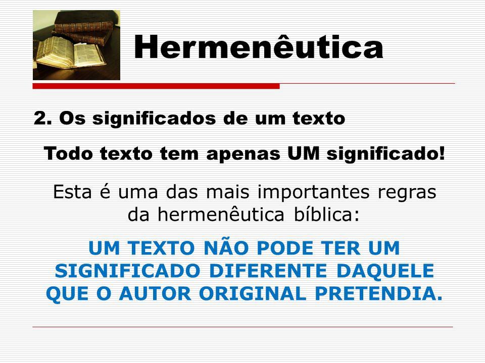 Hermenêutica 2. Os significados de um texto