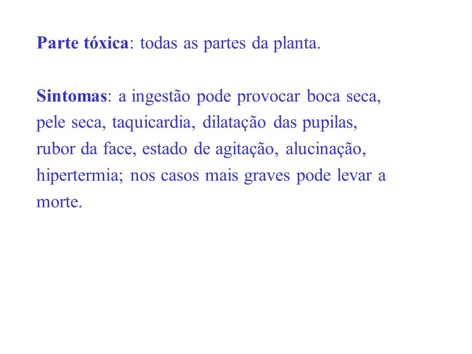 Parte tóxica: todas as partes da planta.