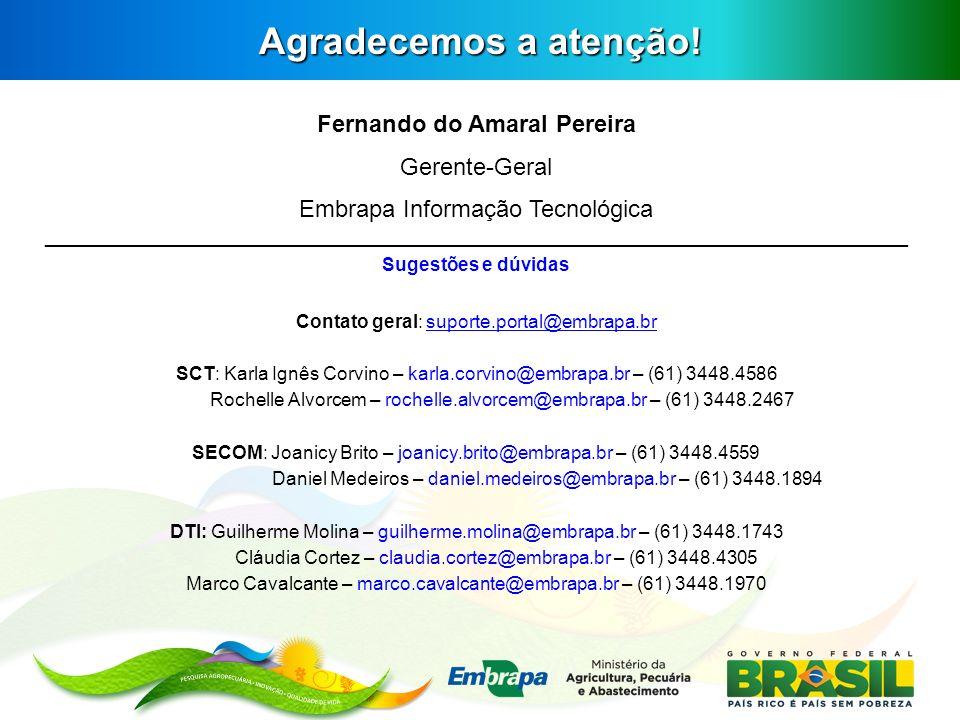 Fernando do Amaral Pereira