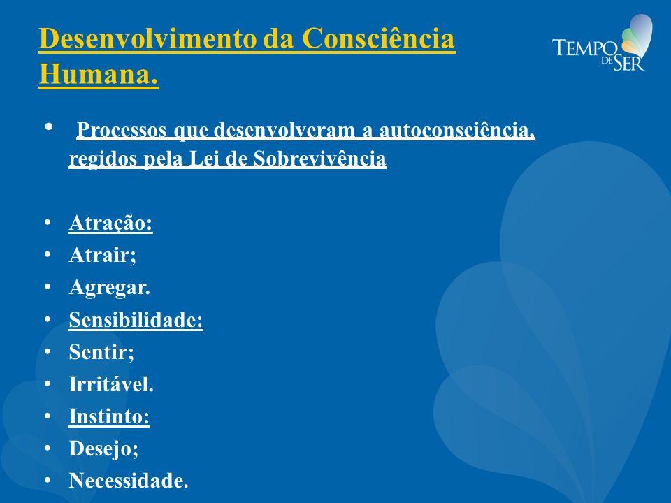 Desenvolvimento da Consciência Humana.