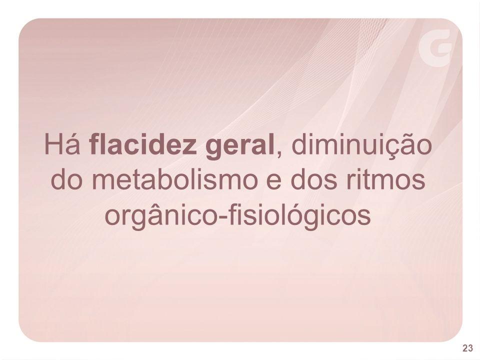 Há flacidez geral, diminuição do metabolismo e dos ritmos orgânico-fisiológicos