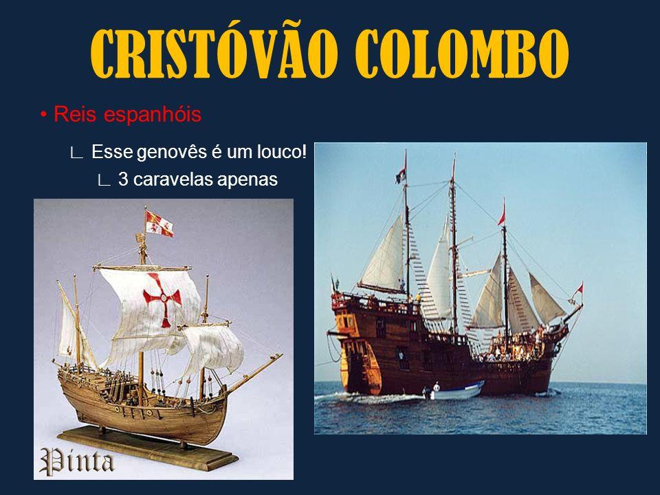 CRISTÓVÃO COLOMBO ∟ Esse genovês é um louco! • Reis espanhóis