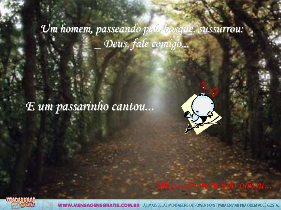 Um homem, passeando pelo bosque, sussurrou: _ Deus, fale comigo...