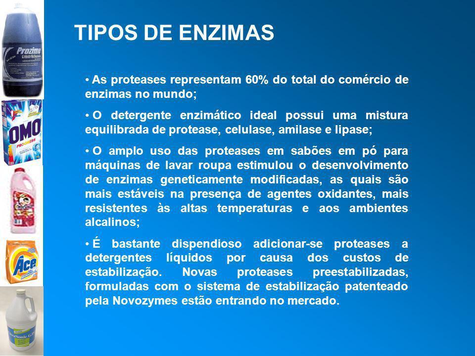 TIPOS DE ENZIMAS As proteases representam 60% do total do comércio de enzimas no mundo;