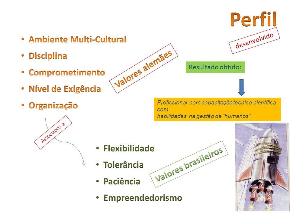 Perfil Ambiente Multi-Cultural Disciplina Comprometimento