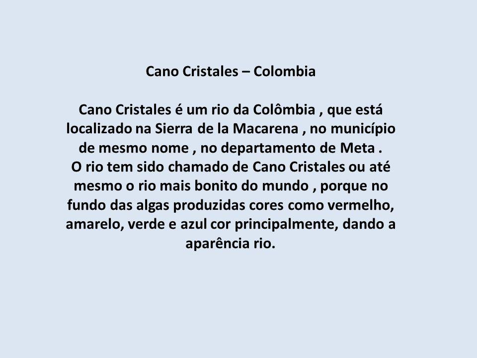 Cano Cristales – Colombia