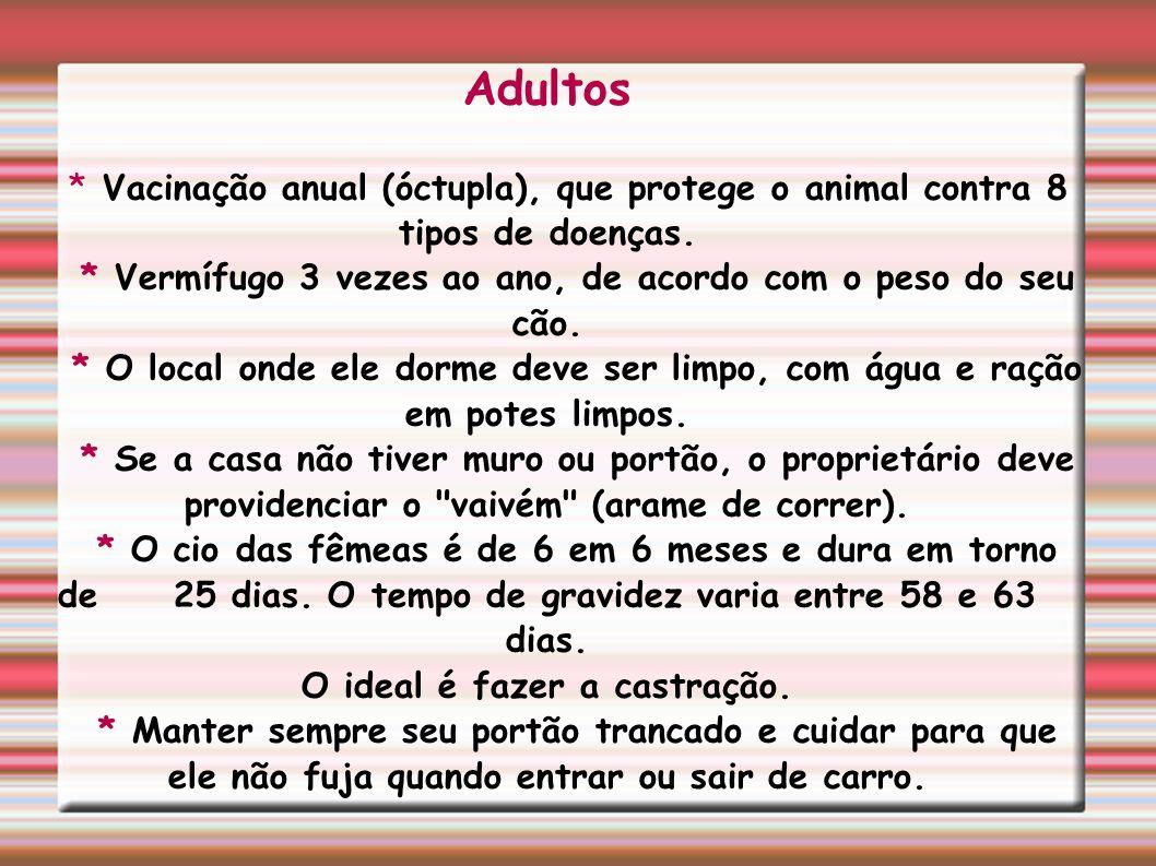 Adultos * Vacinação anual (óctupla), que protege o animal contra 8 tipos de doenças. * Vermífugo 3 vezes ao ano, de acordo com o peso do seu cão.