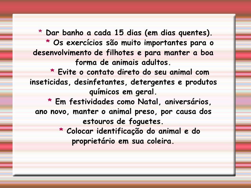 * Colocar identificação do animal e do proprietário em sua coleira.