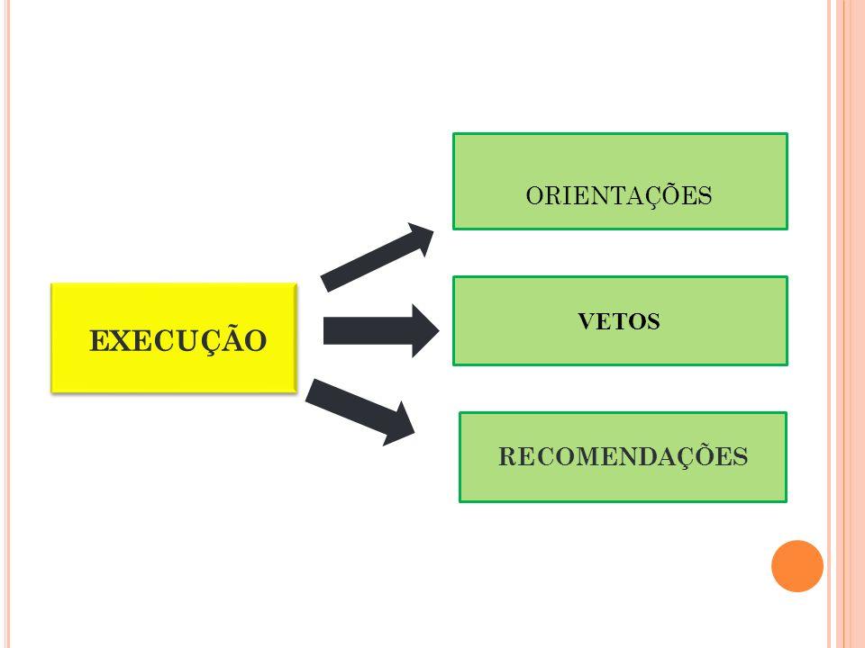 ORIENTAÇÕES VETOS EXECUÇÃO RECOMENDAÇÕES