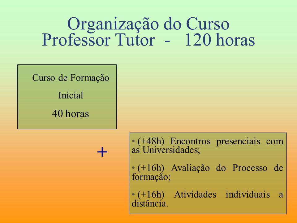 Organização do Curso Professor Tutor - 120 horas