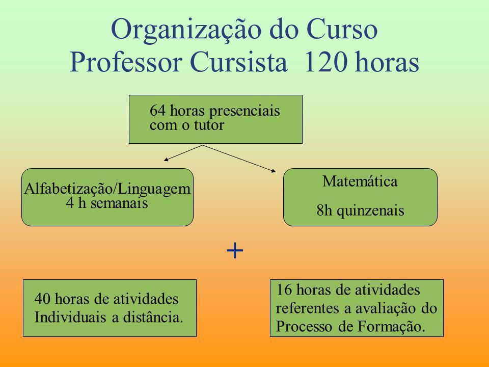 Organização do Curso Professor Cursista 120 horas