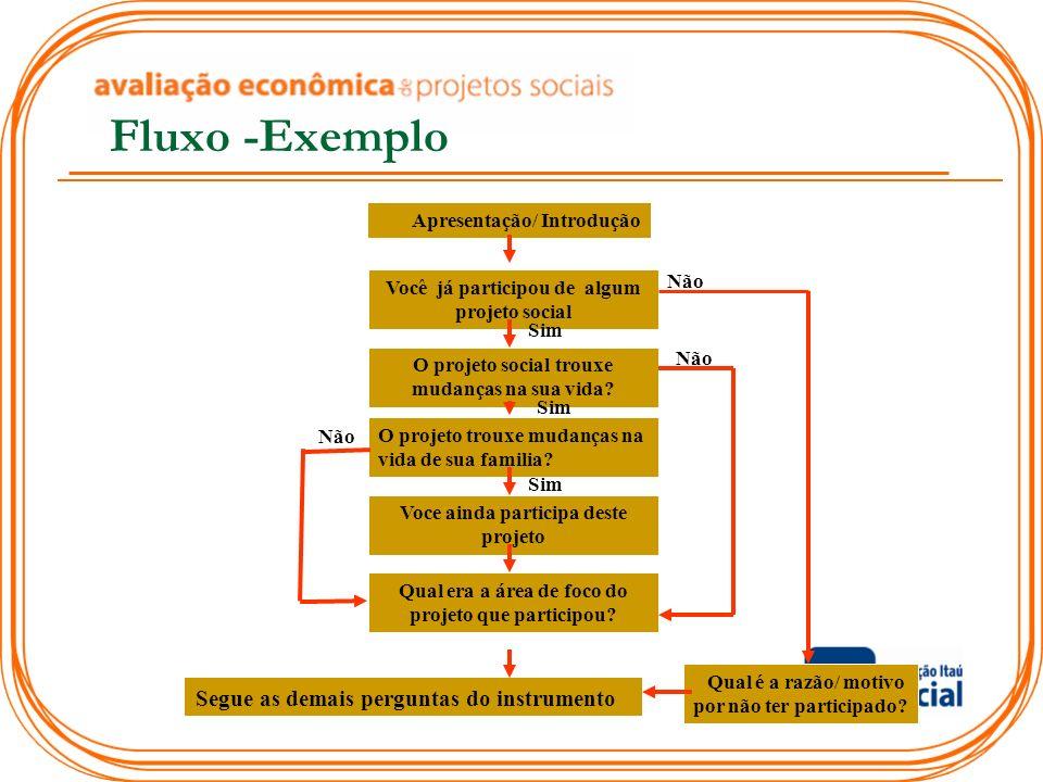 Fluxo -Exemplo Segue as demais perguntas do instrumento