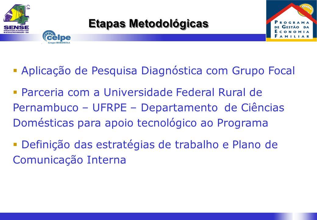Etapas Metodológicas Aplicação de Pesquisa Diagnóstica com Grupo Focal
