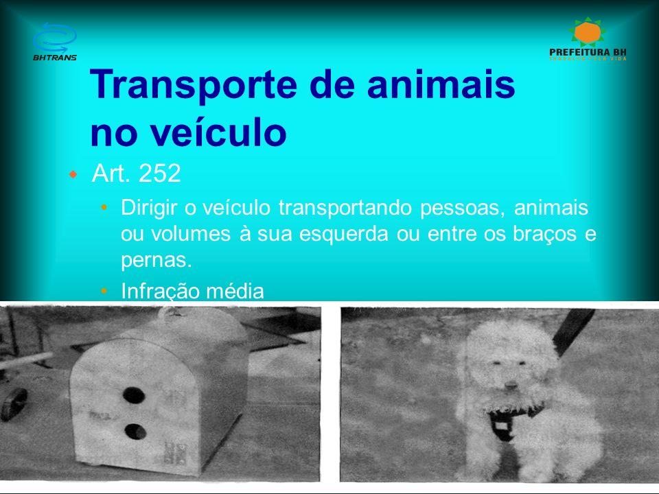 Transporte de animais no veículo