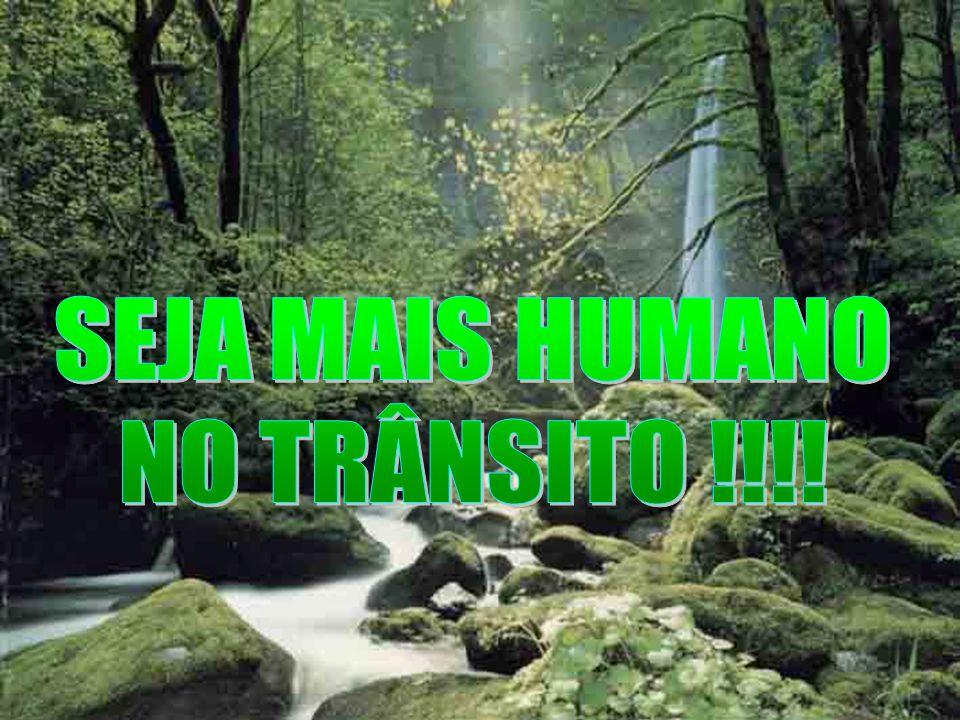 SEJA MAIS HUMANO NO TRÂNSITO !!!!