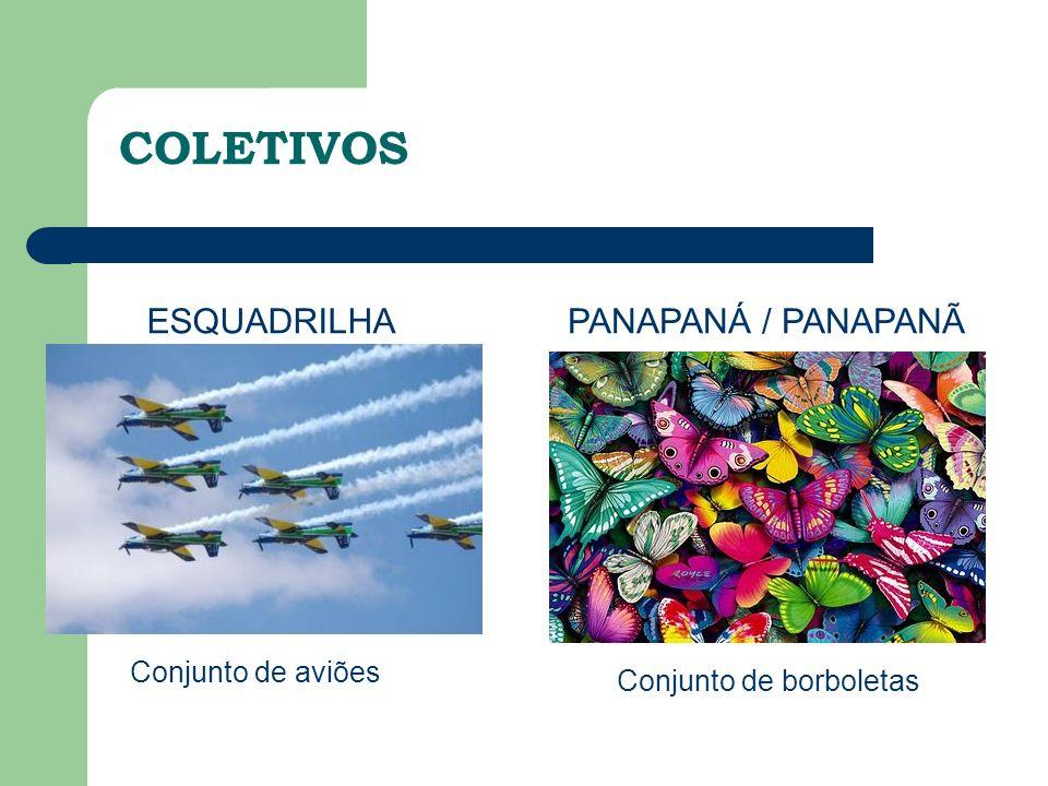 COLETIVOS ESQUADRILHA PANAPANÁ / PANAPANÃ Conjunto de aviões