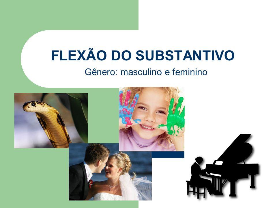 FLEXÃO DO SUBSTANTIVO Gênero: masculino e feminino