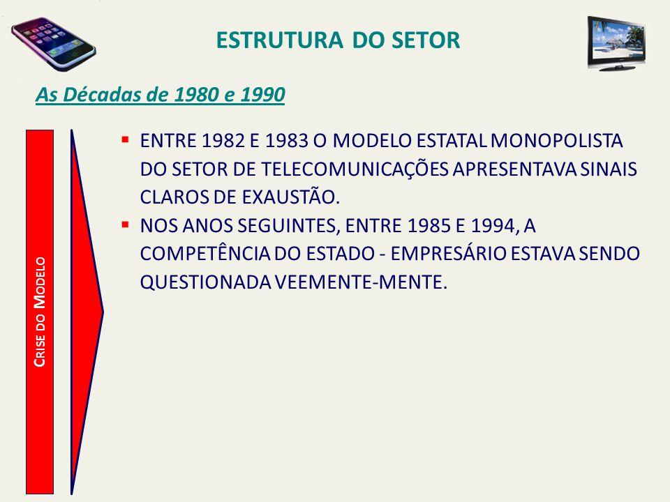 ESTRUTURA DO SETOR As Décadas de 1980 e 1990