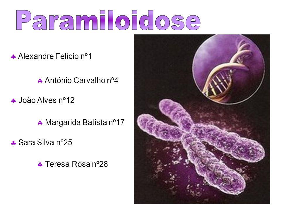 Paramiloidose    Alexandre Felício nº1  António Carvalho nº4
