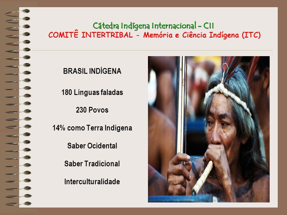 Cátedra Indígena Internacional - CII COMITÊ INTERTRIBAL - Memória e Ciência Indígena (ITC)