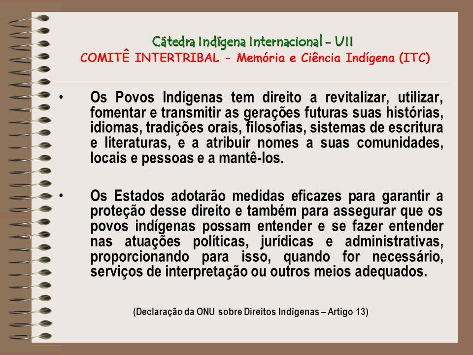 (Declaração da ONU sobre Direitos Indígenas – Artigo 13)
