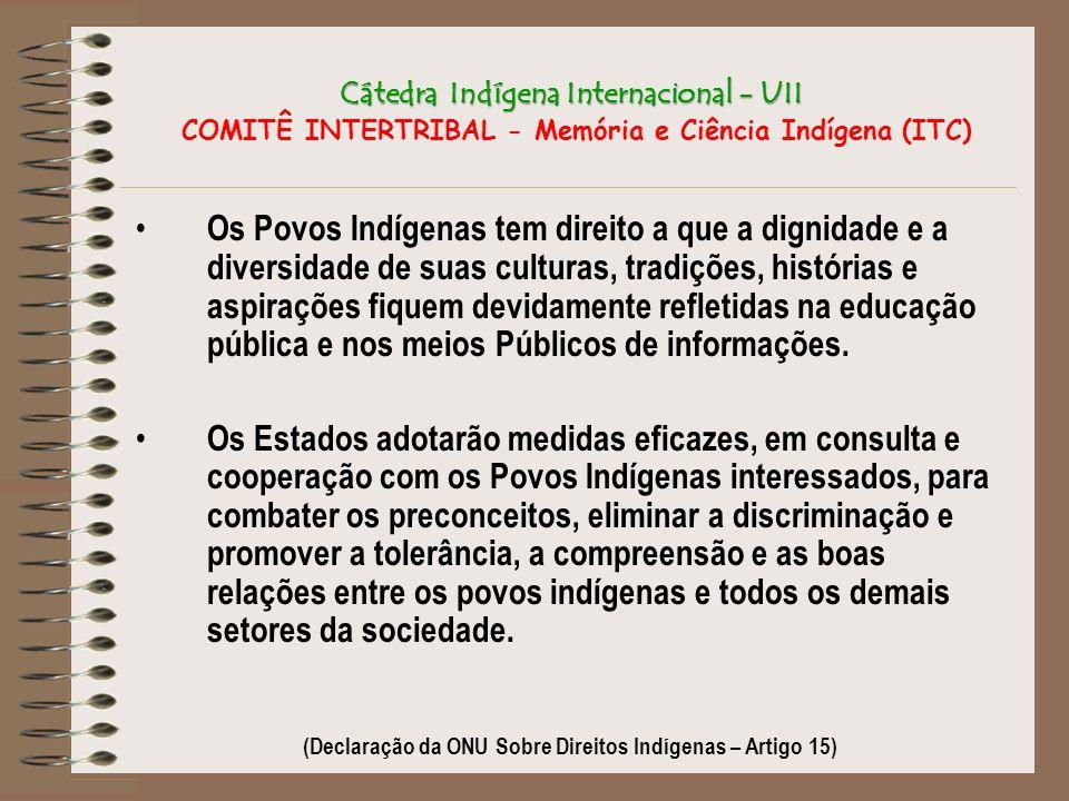 (Declaração da ONU Sobre Direitos Indígenas – Artigo 15)