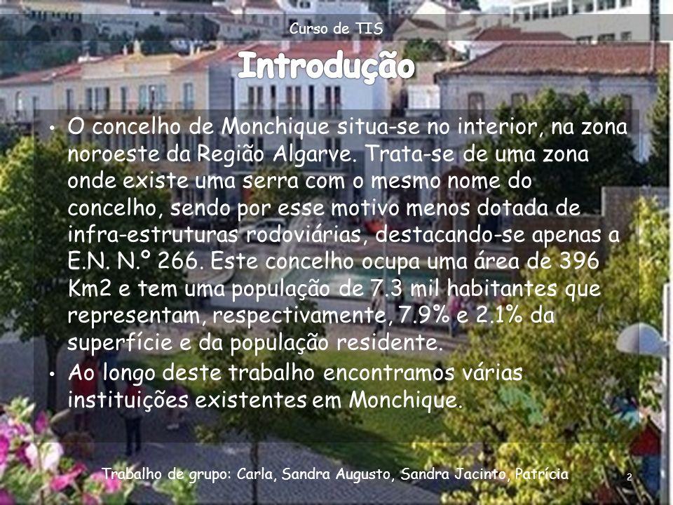 Curso de TIS Introdução.