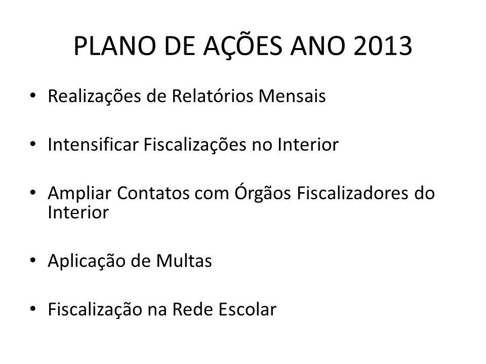 PLANO DE AÇÕES ANO 2013 Realizações de Relatórios Mensais