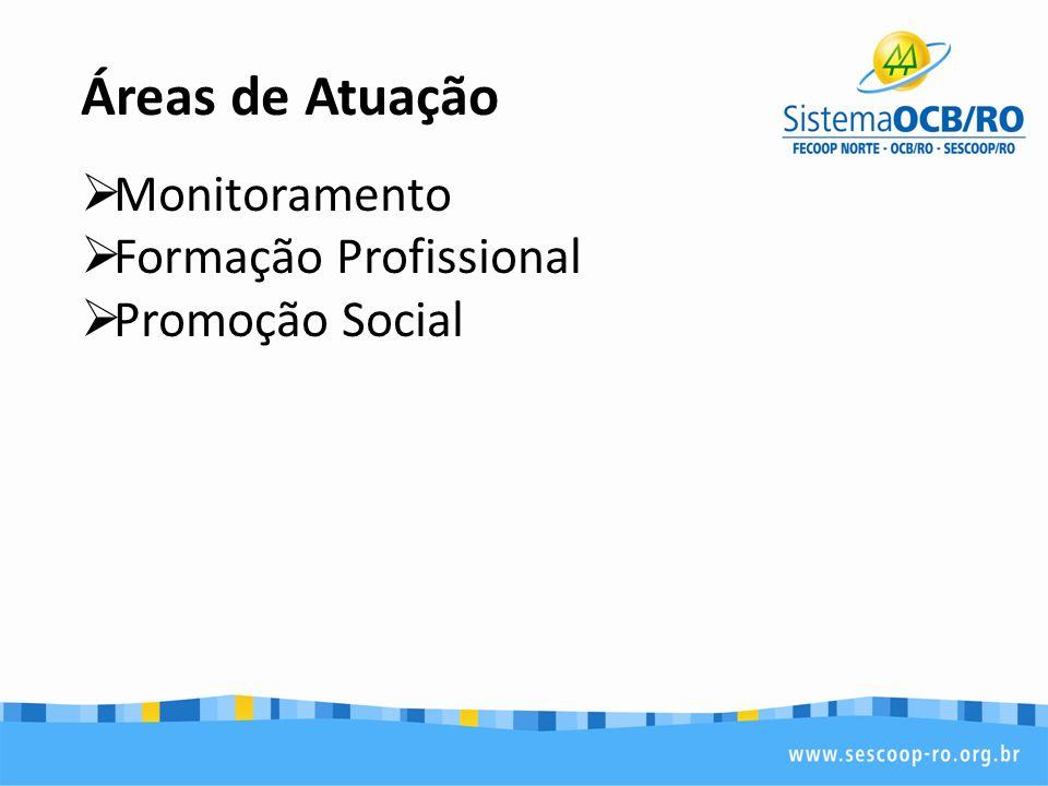 Áreas de Atuação Monitoramento Formação Profissional Promoção Social