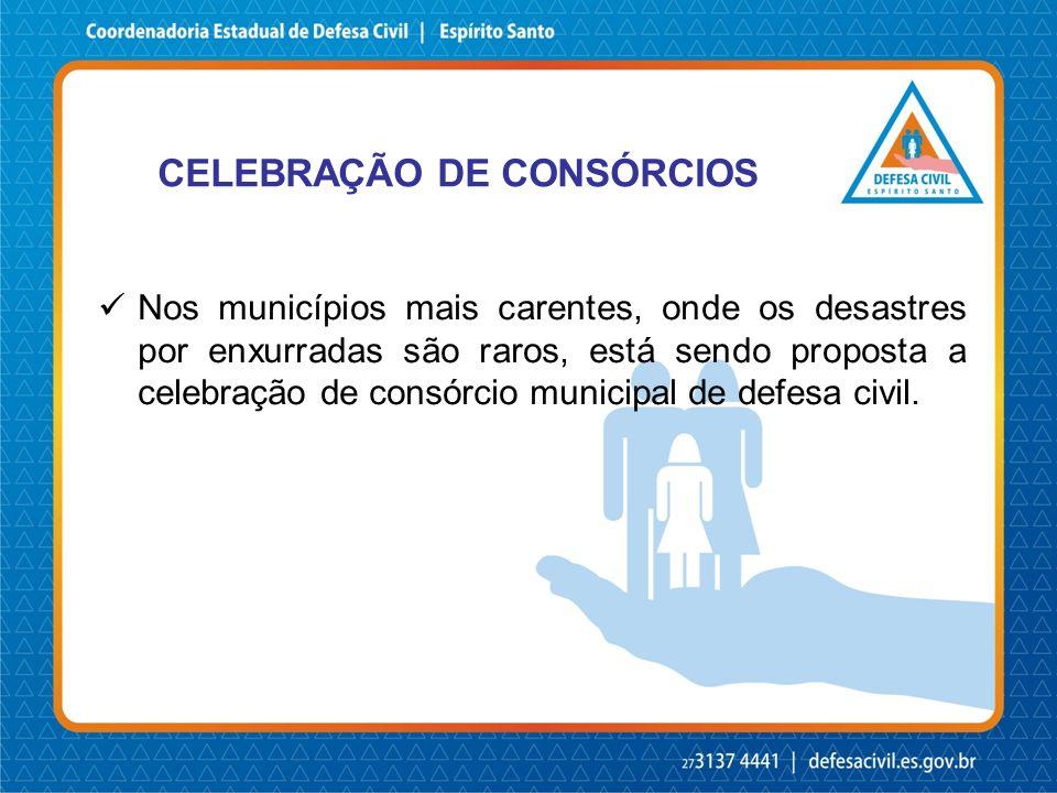 CELEBRAÇÃO DE CONSÓRCIOS