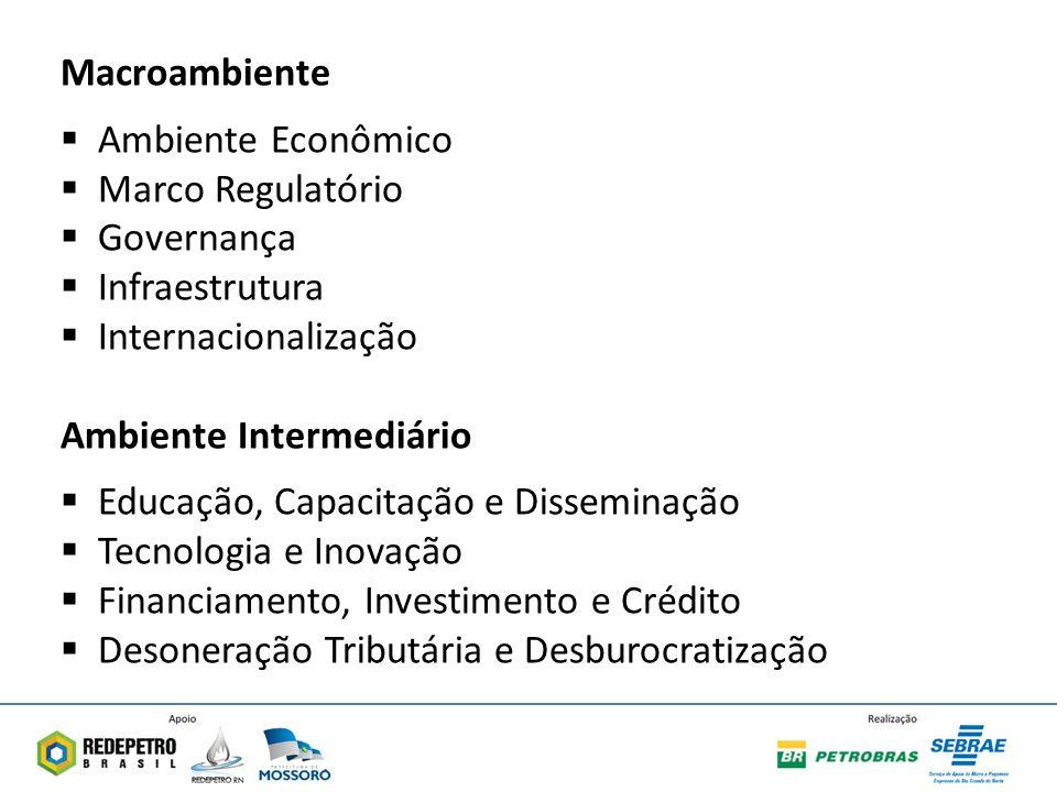 Macroambiente Ambiente Econômico. Marco Regulatório. Governança. Infraestrutura. Internacionalização.