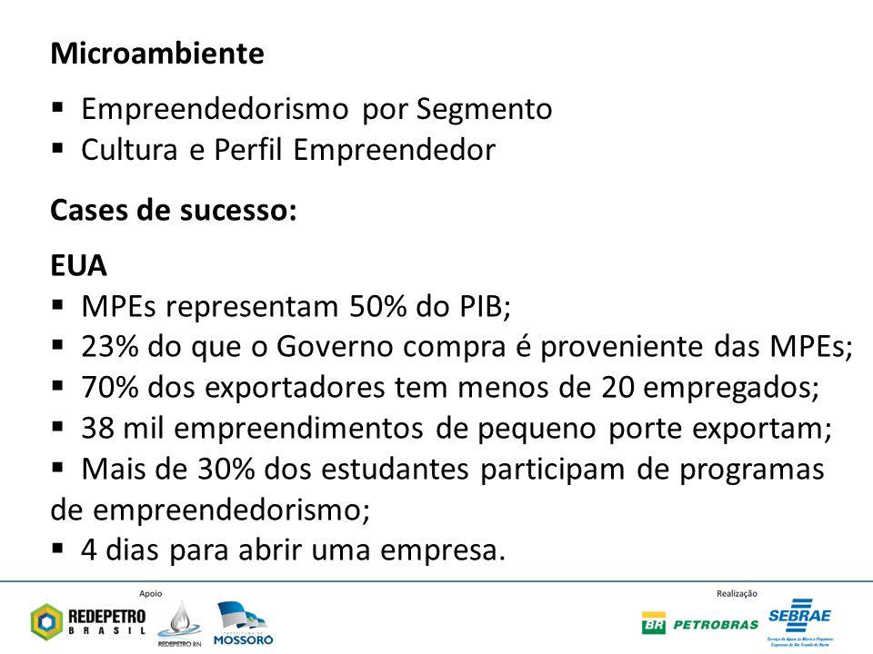 Microambiente Empreendedorismo por Segmento. Cultura e Perfil Empreendedor. Cases de sucesso: EUA.