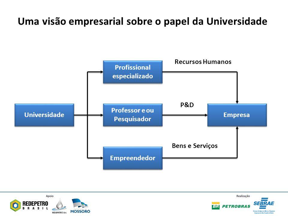 Uma visão empresarial sobre o papel da Universidade