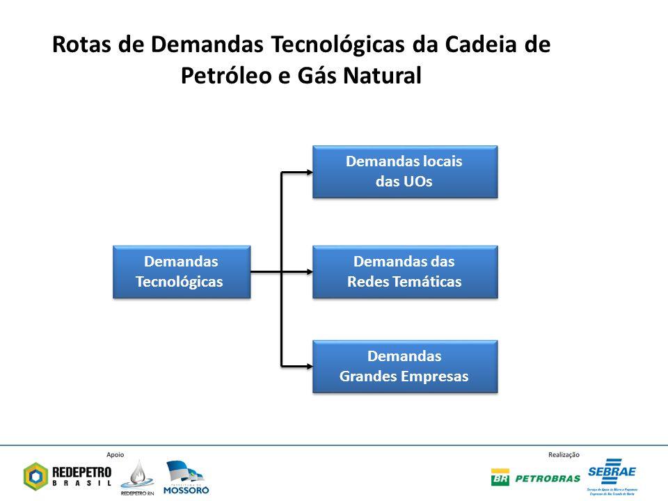 Rotas de Demandas Tecnológicas da Cadeia de Petróleo e Gás Natural