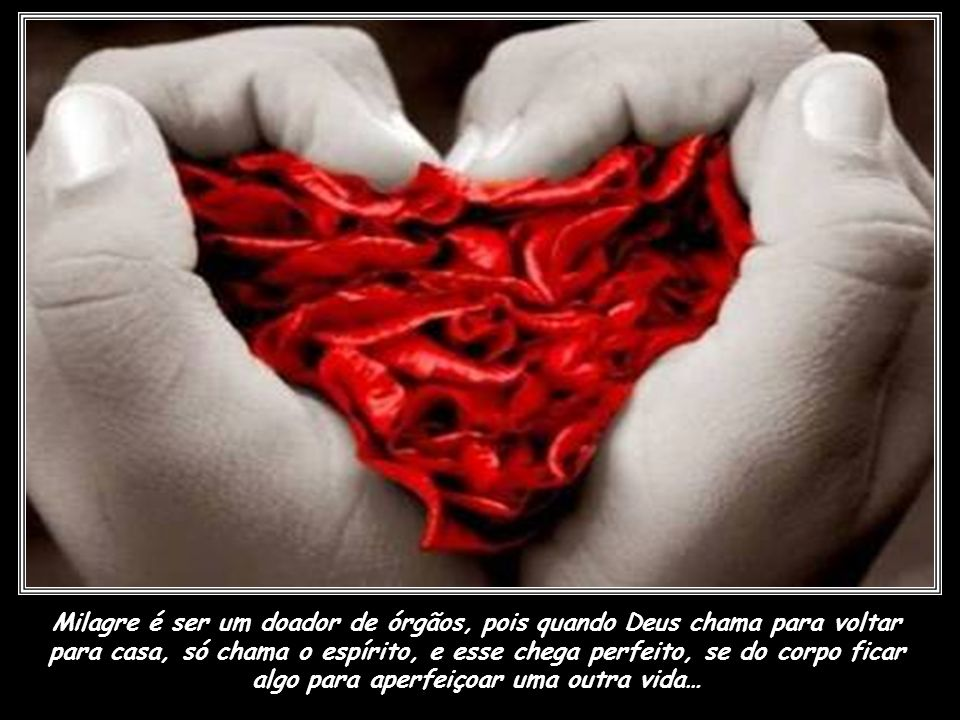 Milagre é ser um doador de órgãos, pois quando Deus chama para voltar para casa, só chama o espírito, e esse chega perfeito, se do corpo ficar algo para aperfeiçoar uma outra vida…