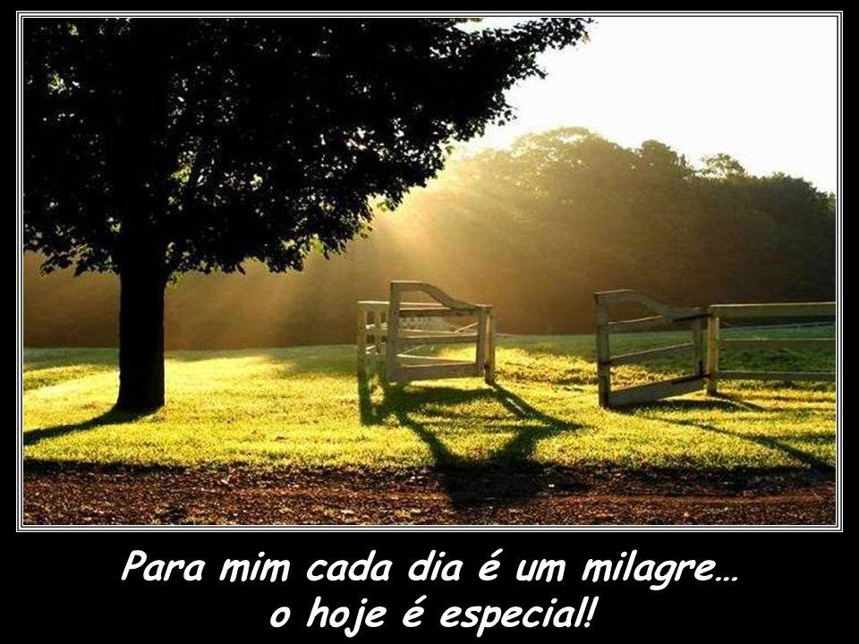 Para mim cada dia é um milagre…