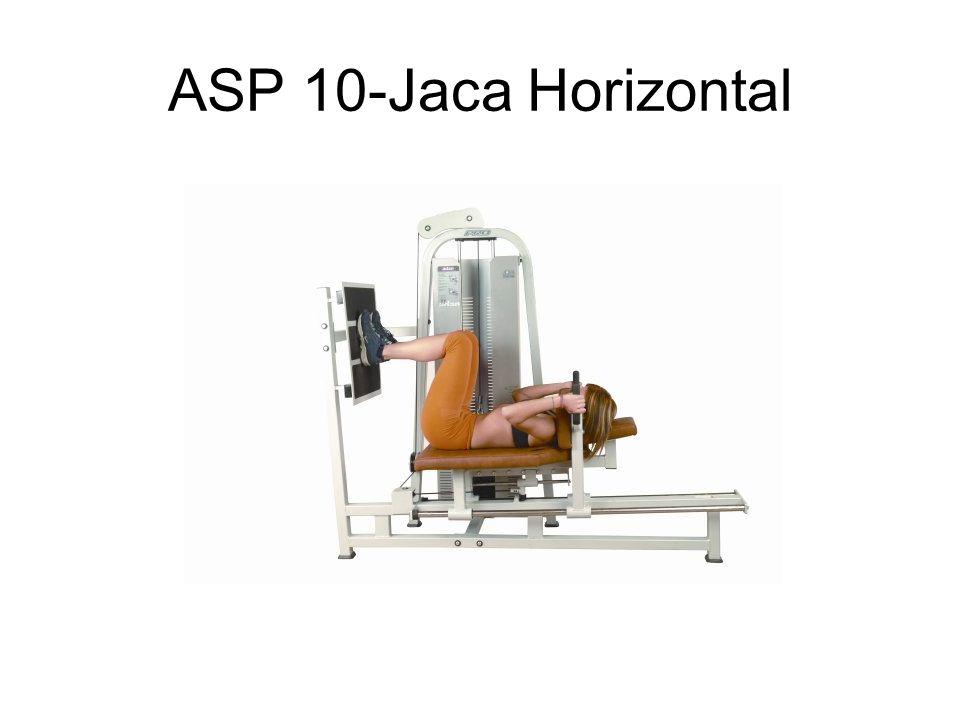 ASP 10-Jaca Horizontal