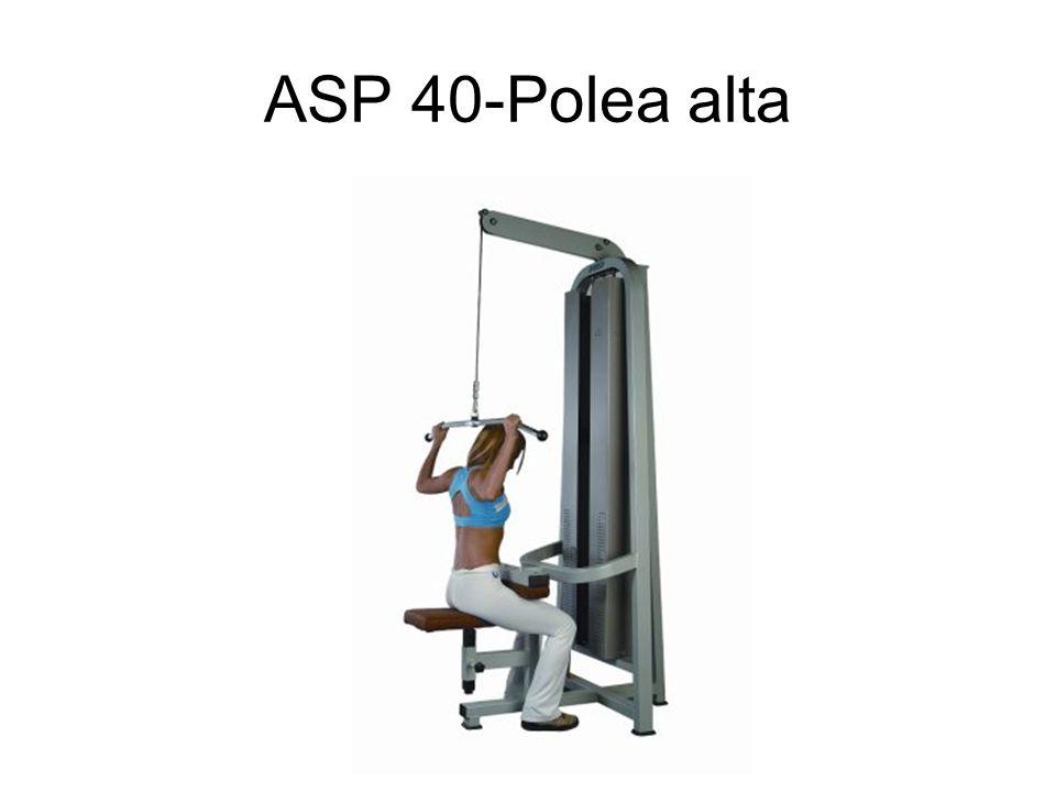 ASP 40-Polea alta