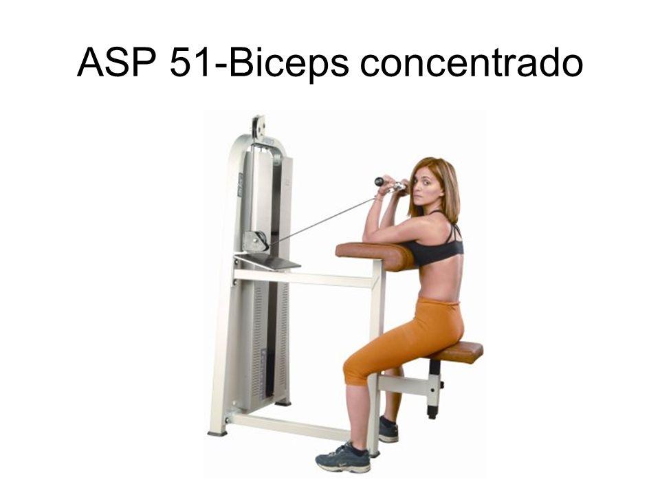 ASP 51-Biceps concentrado
