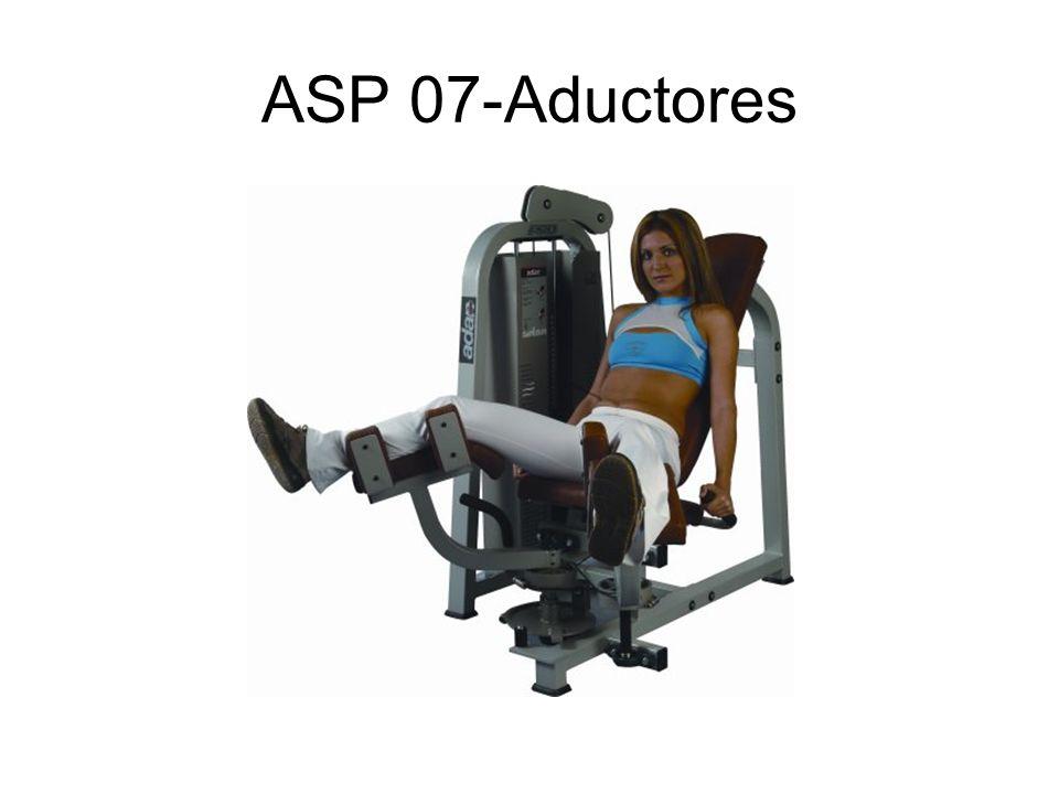 ASP 07-Aductores