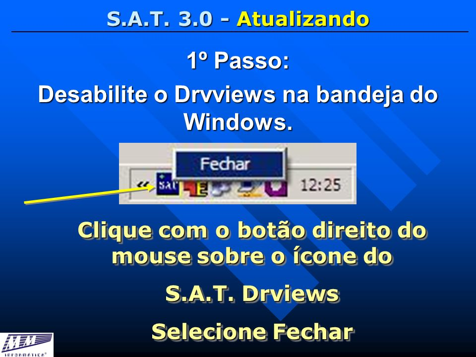 1º Passo: Desabilite o Drvviews na bandeja do Windows.