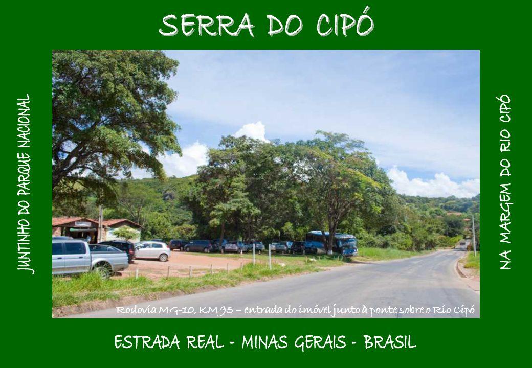 JUNTINHO DO PARQUE NACIONAL ESTRADA REAL - MINAS GERAIS - BRASIL