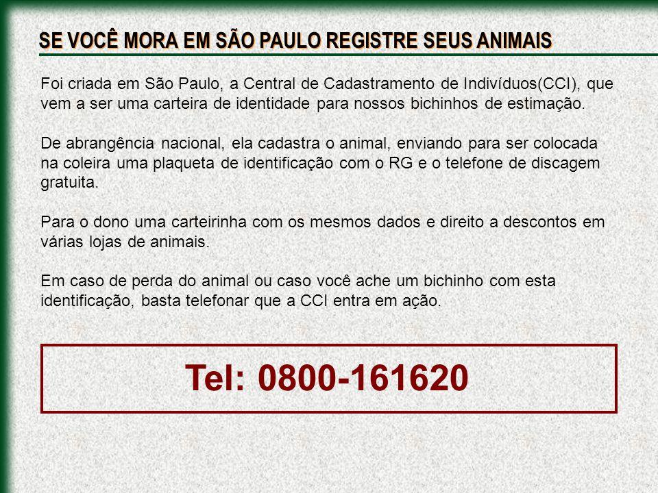 Tel: 0800-161620 SE VOCÊ MORA EM SÃO PAULO REGISTRE SEUS ANIMAIS