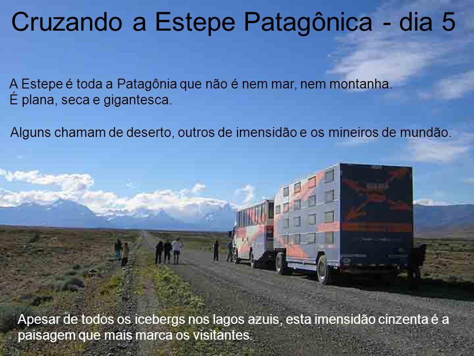 Cruzando a Estepe Patagônica - dia 5