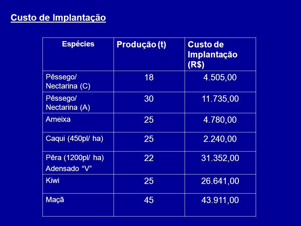 Custo de Implantação Produção (t) Custo de Implantação (R$) 18