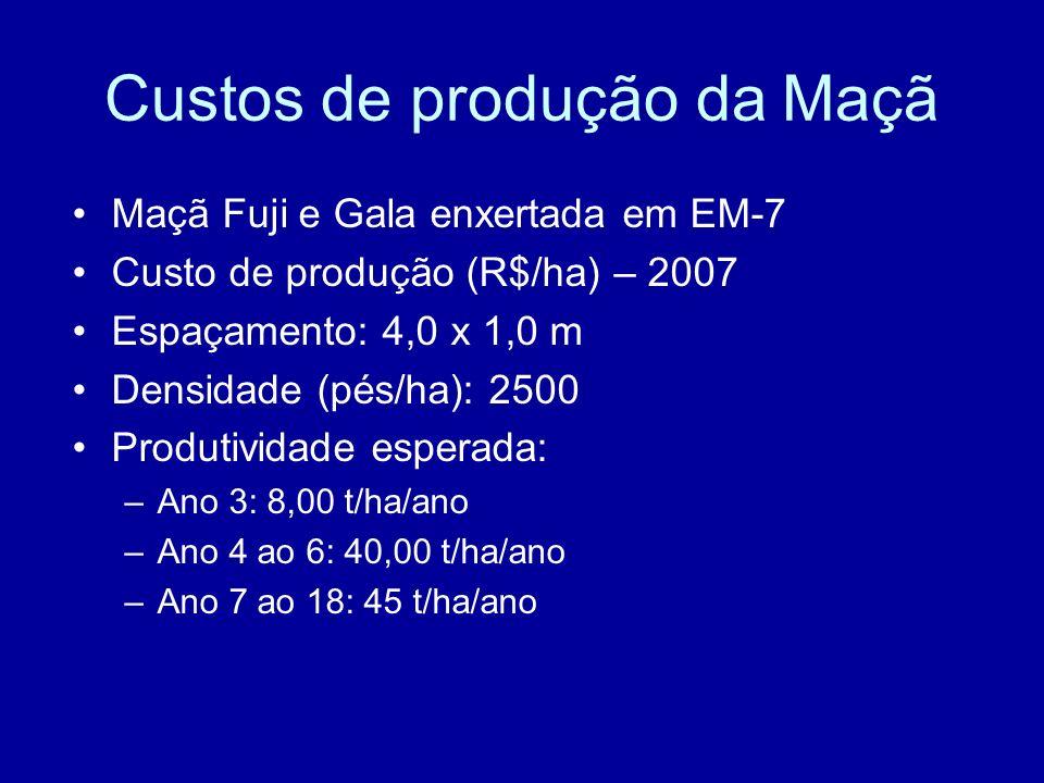 Custos de produção da Maçã